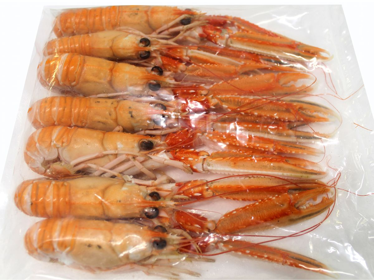 Cooked Hebridean Langoustine - 1kg N3 - Small