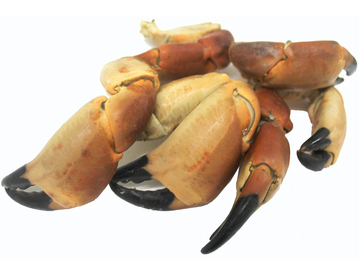 Hebridean Whole Crab Claws 500g